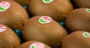 Kiwi de l'Adour Label Rouge et IGP